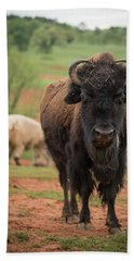 Beach Towel featuring the photograph Bison 6 by Joye Ardyn Durham