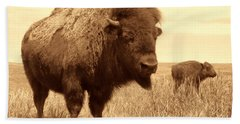 Bison And Calf Beach Sheet by American West Legend By Olivier Le Queinec