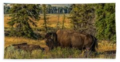 Beach Towel featuring the photograph Bison Bull Herding Cows by Yeates Photography