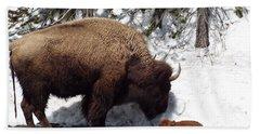 Bison Calf After Birth Beach Towel
