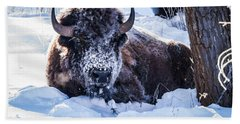 Beach Towel featuring the photograph Bison At Frozen Dawn by Yeates Photography