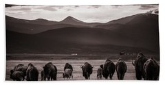 Bison Herd Into The Sunset - Bw Beach Towel