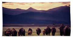 Beach Towel featuring the photograph Bison Herd Into The Sunset by Chris Bordeleau
