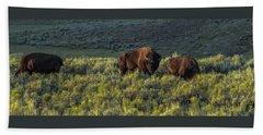 Bison In Autumn Light Beach Sheet