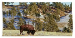 Bison In Custer State Park Beach Sheet