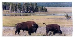 Bison In Yellowstone Beach Sheet