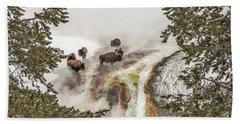 Bison Taking A Steam Bath Beach Towel