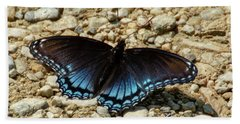 Black And Blue Monarch Butterfly Beach Towel