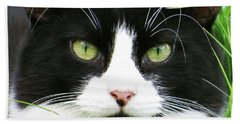 Black And White Cat Beach Towel