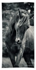 Black And White Portrait Of Horse Beach Sheet