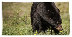 Beach Towel featuring the photograph Black Bear by Brad Allen Fine Art