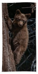 Black Bear Cub Sequoia National Park Beach Towel