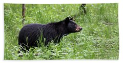 Beach Towel featuring the photograph Black Bear In The Woods by Andrea Silies
