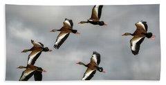 Black Bellied Whistling Ducks Beach Sheet