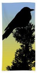 Black-billed Magpie Silhouette At Sunrise Beach Sheet