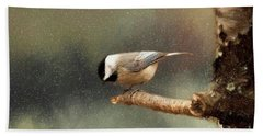 Beach Towel featuring the photograph Black Capped Chickadee by Darren Fisher