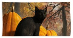 Black Cat At Halloween Beach Sheet by Daniel Eskridge