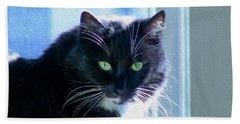 Black Cat In Sun Beach Towel