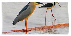 Black Crown Night Heron And Stilt Beach Towel