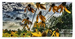 Black Eyed Susan Beach Towel by Sumoflam Photography