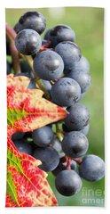 Black Grapes On The Vine Beach Sheet