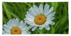Black-headed Daisy's Beach Towel