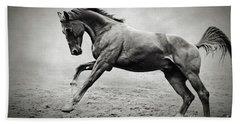 Black Horse In Dust Beach Sheet