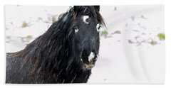 Black Horse Staring In The Snow Beach Towel