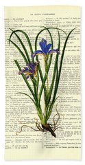 Black Iris Antique Illustration On Dictionary Page Beach Towel