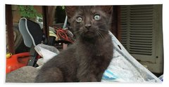 Black Kitten Beach Towel