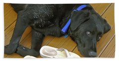 Black Lab Resting Beach Towel