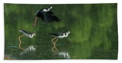 Black-necked Stilts 4301-080917-1cr Beach Towel
