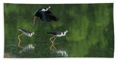 Black-necked Stilts 4301-080917-1cr Beach Towel