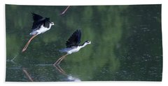 Black-necked Stilts 4302-080917-2cr Beach Towel