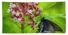 Black Swallowtail 54 Beach Sheet