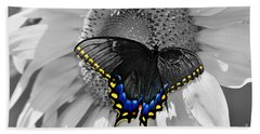 Black Swallowtail And Sunflower Color Splash Beach Sheet