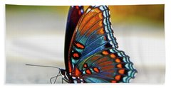 Black Swallowtail Butterfly 003 Beach Towel