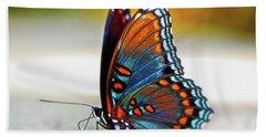 Black Swallowtail Butterfly 003 Beach Sheet