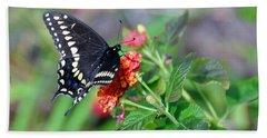 Beach Sheet featuring the photograph Black Swallowtail by Kay Lovingood