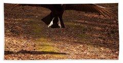 Beach Sheet featuring the digital art Black Vulture Landing by Chris Flees