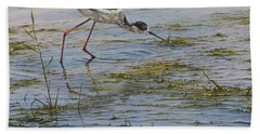 Beach Towel featuring the painting Black Winged Stilt by Alan M Hunt