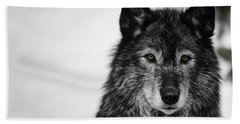 Black Wolf I Beach Sheet