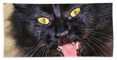 Beach Towel featuring the photograph Blackie by Geraldine DeBoer