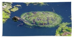 Blending In Turtle Beach Sheet