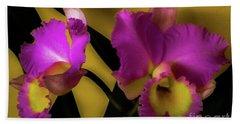 Blooming Cattleya Orchids Beach Towel