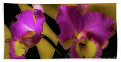 Beach Towel featuring the photograph Blooming Cattleya Orchids by D Davila