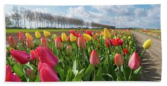 Blooming Holland Tulips Beach Sheet