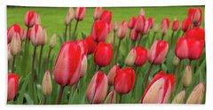Blooming Red Tulips Beach Towel