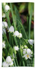 Blooming Snow Drop Lily Flowers In The Wild Beach Sheet