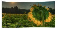 Blooming Sunflower Facing Rising Sun Beach Towel